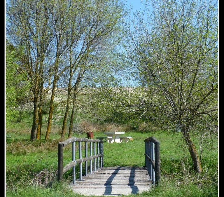 Acondicionamiento del Área Natural de Las Cárcavas